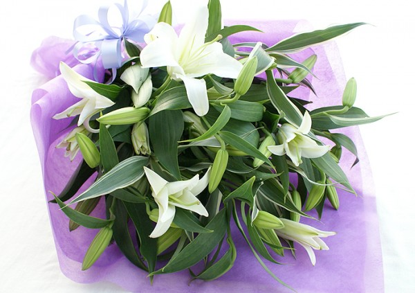 Lily flower meanings : how to be elegant