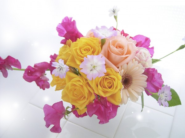 Seven flowers appropriate for farewell words