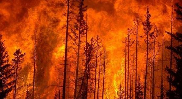 7 your hidden subconscious having a dream about fire.